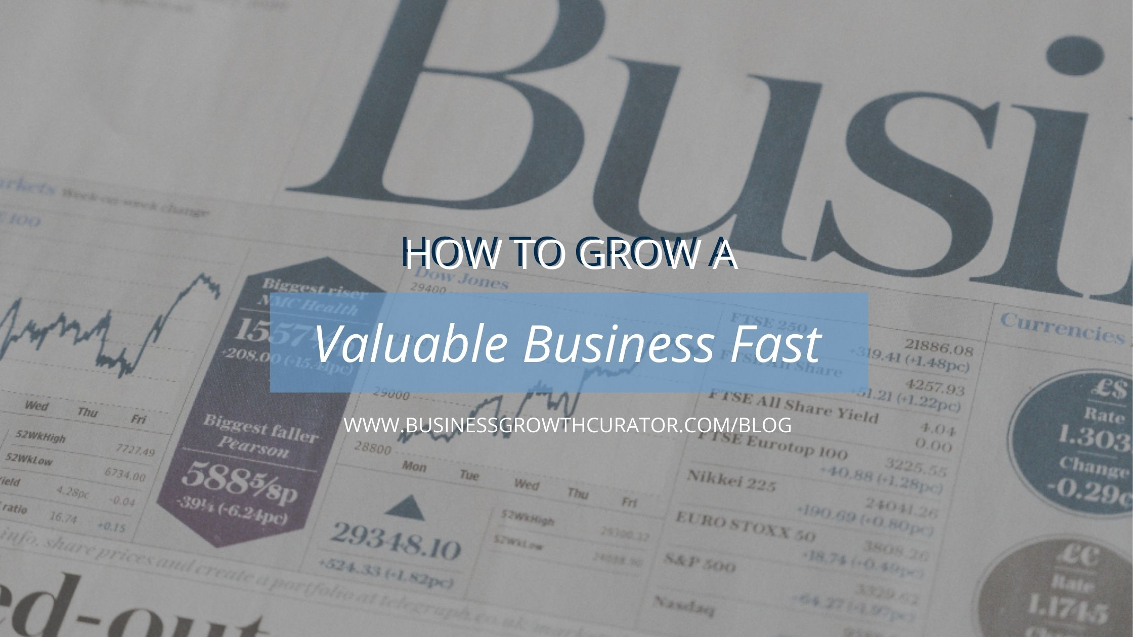 how-to-grow-a-valuable-business-fast-cover